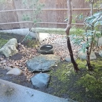 埼玉県久喜市S邸『土の家と土塀門』のサムネイル