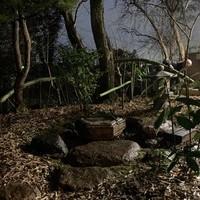 『そば処 竹林』~蹲踞を組む~のサムネイル