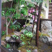 隠れ家ダイニング『 楓 』のサムネイル