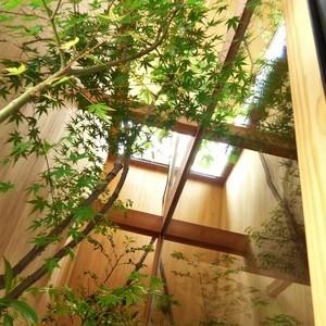 高崎市K邸 ~樹木カーテン~