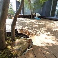 埼玉県熊谷市妻沼T邸 ~家族の成長と共に リガーデン~のサムネイル